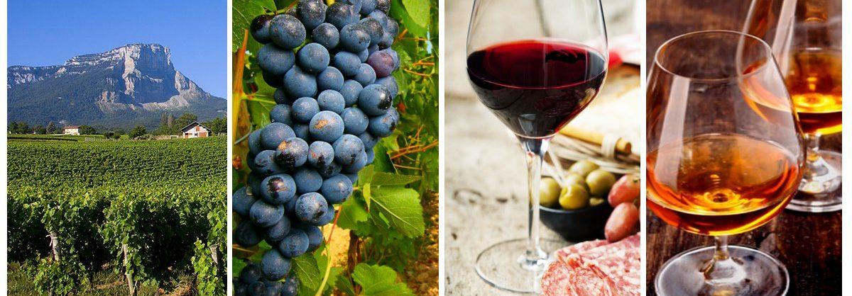 Le spécialiste de vins et spiritueux d'altitude